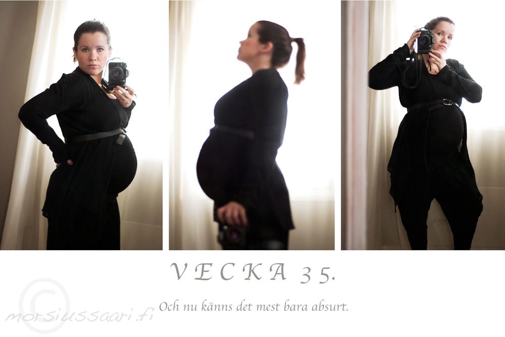 vecka35_0